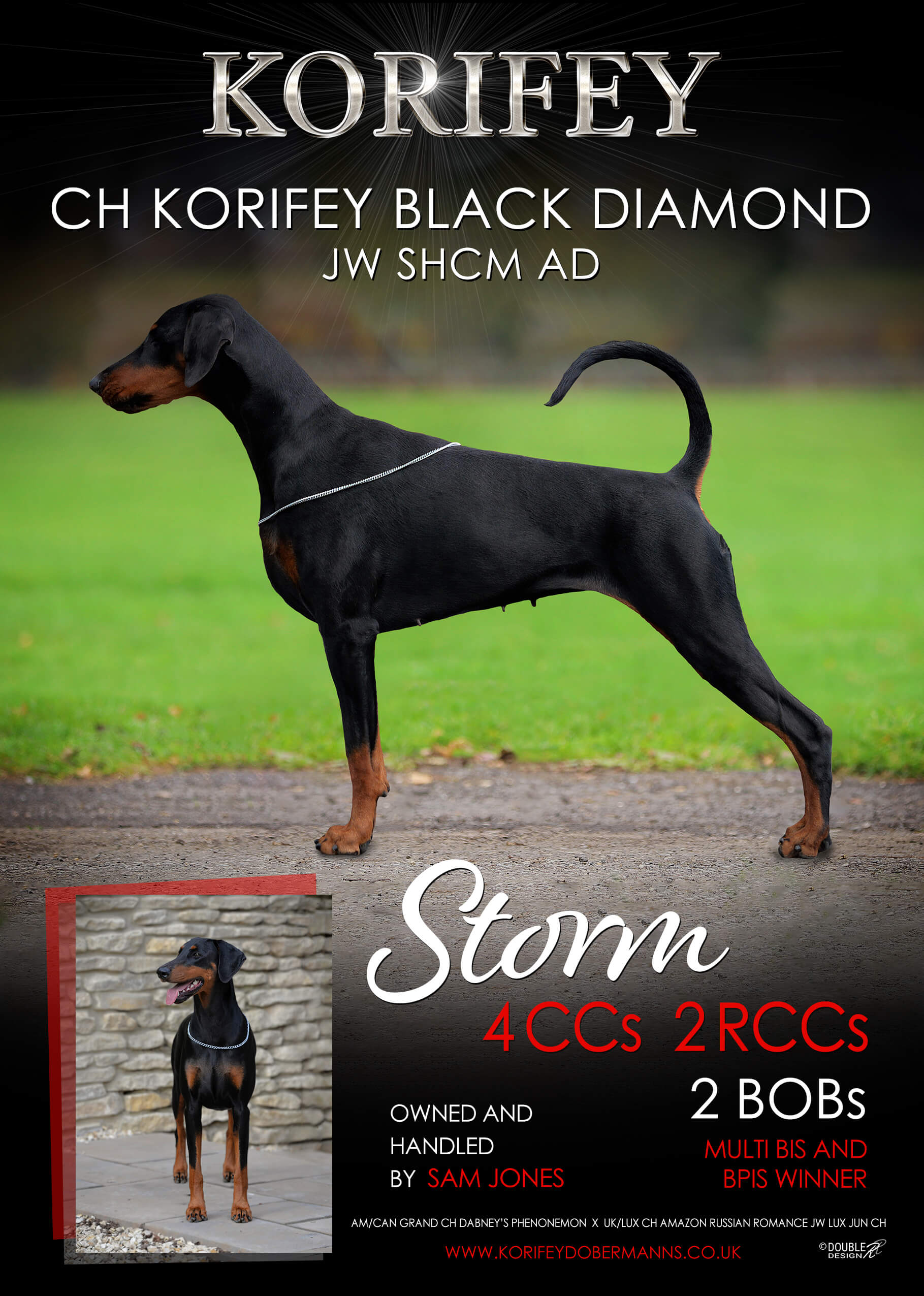 2018 Year Book Asteri Dobermanns